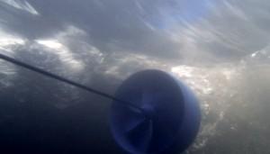 Der Rotor des Blue Freedom im Wasser