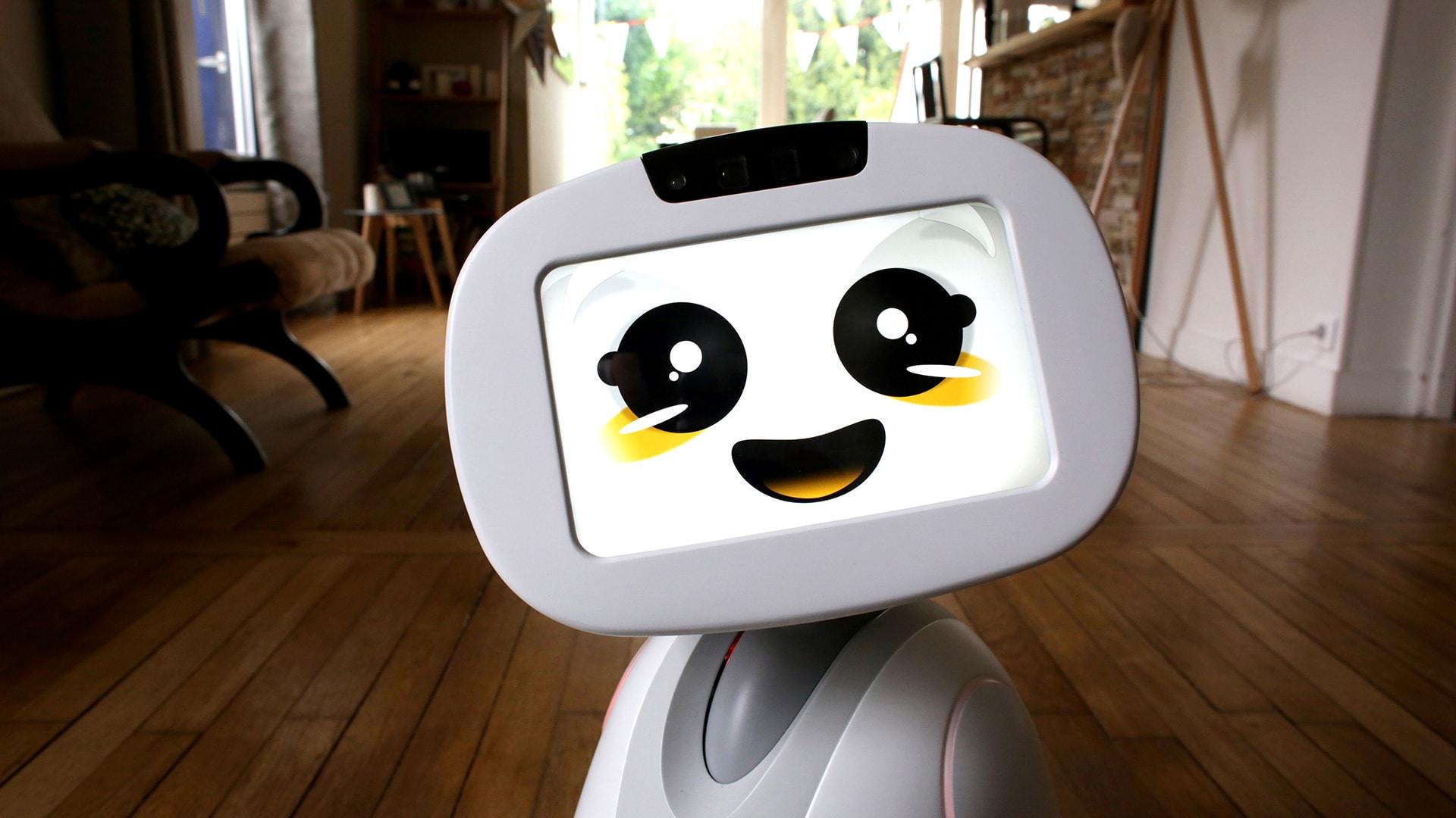 Buddy, der soziale Begleitroboter