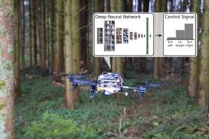 Die neu entwickelte Software basiert auf einem lernfähigen Netzwerk. (Bild: UZH; USI; SUPSI)